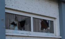 Scheiben-bei-Moschee-eingeworfen 2