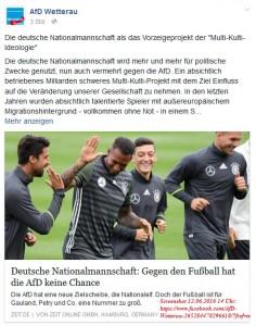 AfD Wetterau - Fussball Verschwörung